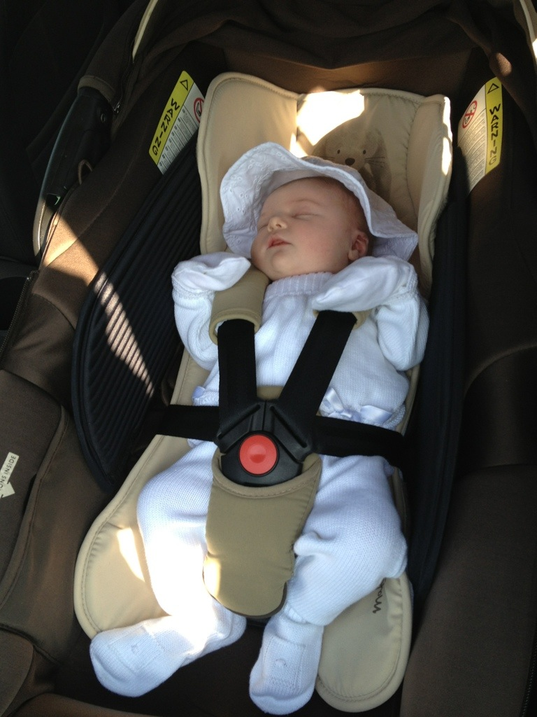 Jane Matrix Cup Car Seat